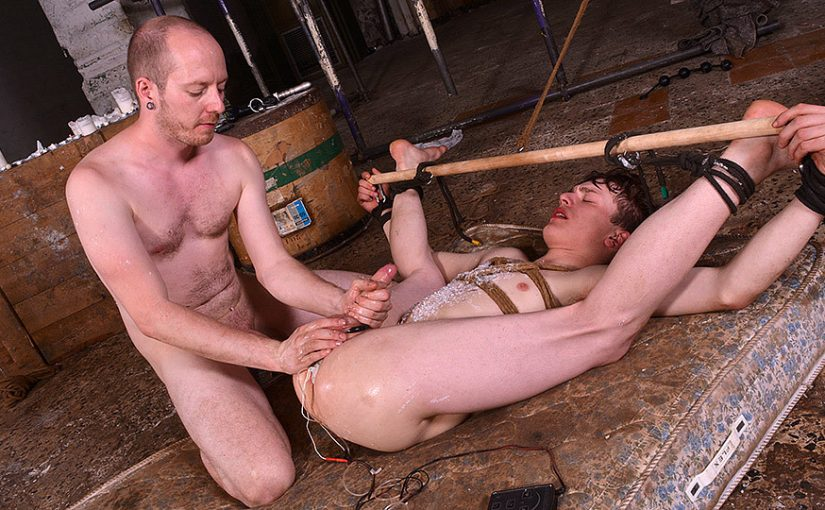 Twinky Plaything Properly Used – Part 3